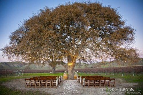 Paso Robles Winery Wedding C Wines