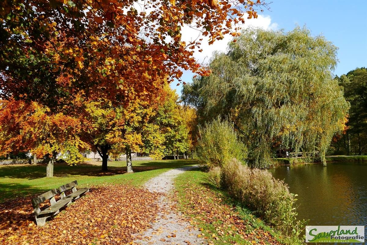 Herbst am Teich Sundern-Allendorf im Sauerland