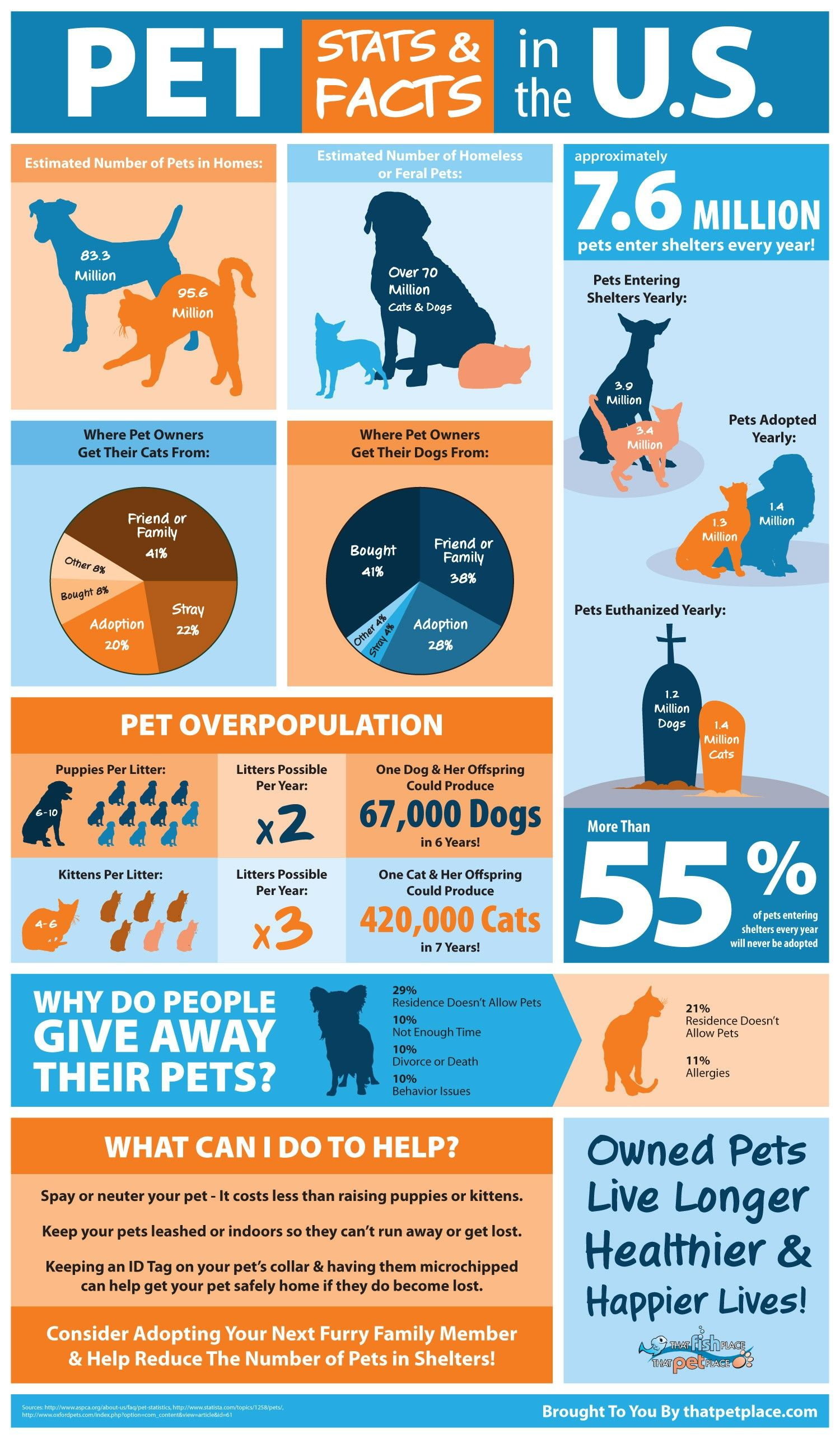 Pet Overpopulation & Shelter Statistics Infographic ...