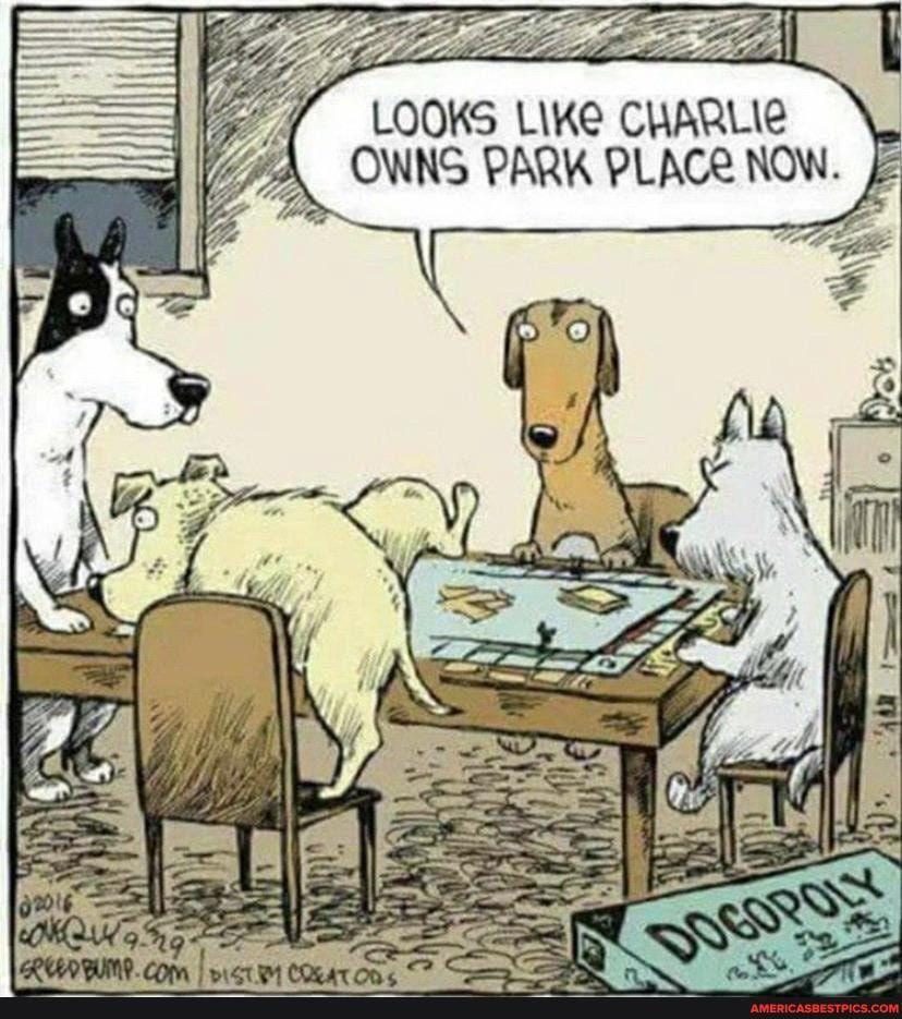Tap To See The Meme In 2020 Dog Jokes Funny Cartoons Cartoon Jokes