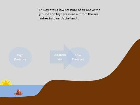 Land And Sea Breeze Explained Fifth Grade Science Pinterest