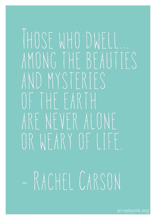 Those Who Dwell Among The Beauties And Mysteries Of The Earth Are Beauteous Rachel Carson Quotes