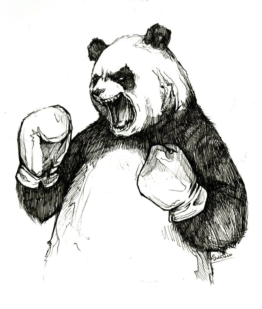Attractive The Angry Boxing Panda By YLimes