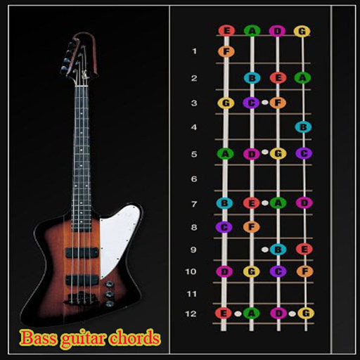 Bass Guitar Chords Design Art And Creativity Pinterest Bass