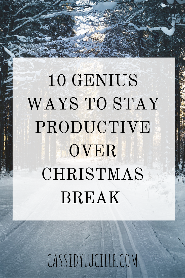 Things To Do Over Christmas Break 2020 10 Genius Ways To Stay Productive Over Winter Break   Cassidy