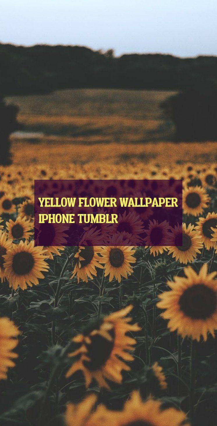 Yellow Flower Wallpaper Iphone Tumblr Gelbe Blumentapete