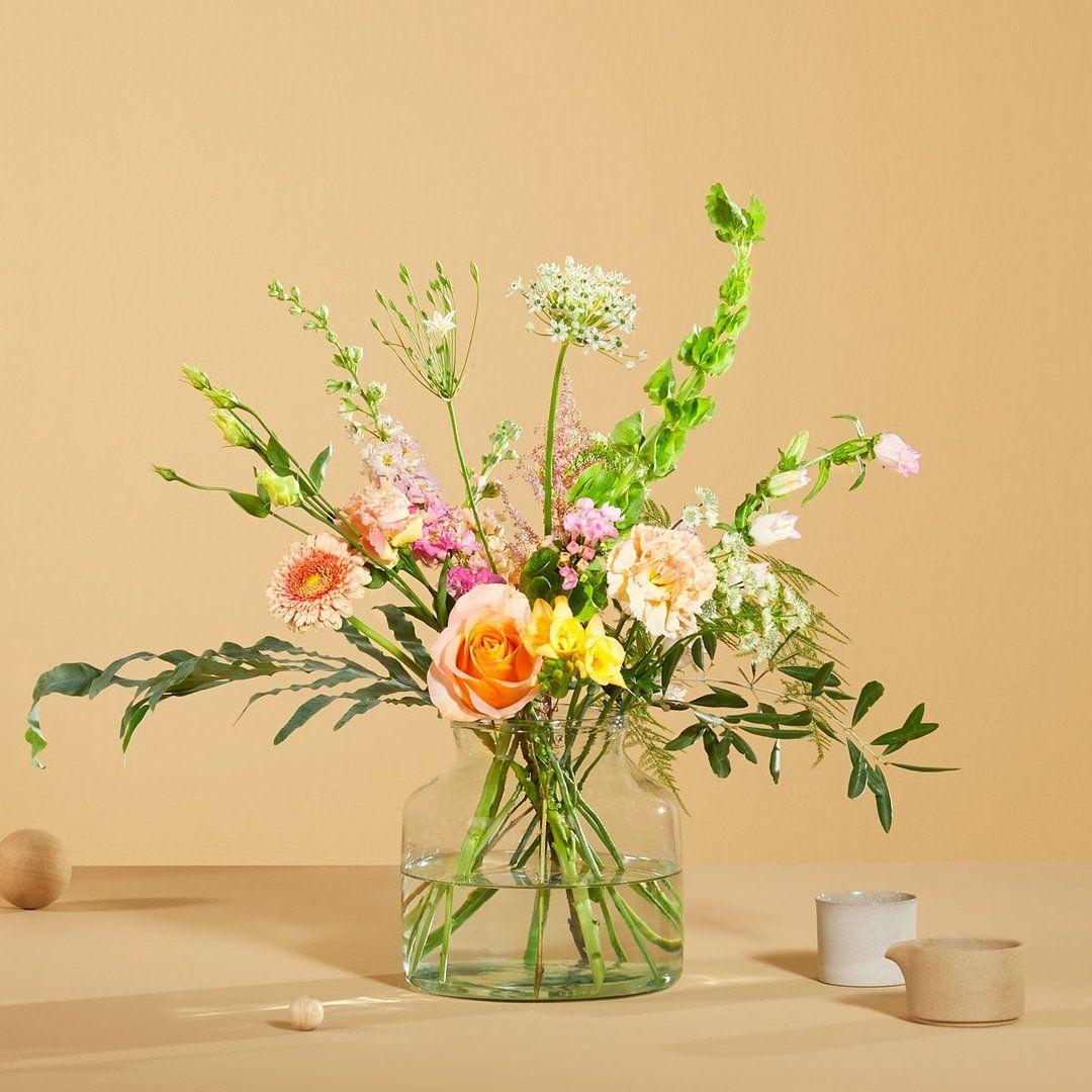 Pixie Kompakt Und Stilvoll Lidl Blumen Blumen Blumen Online