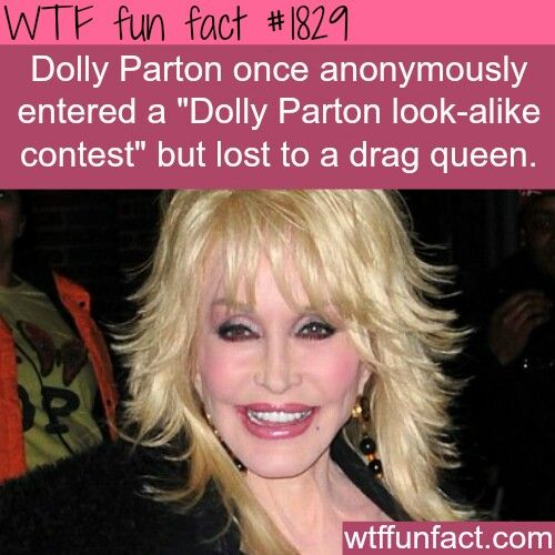 Fun Facts, Funny Facts, Wtf Fun Facts