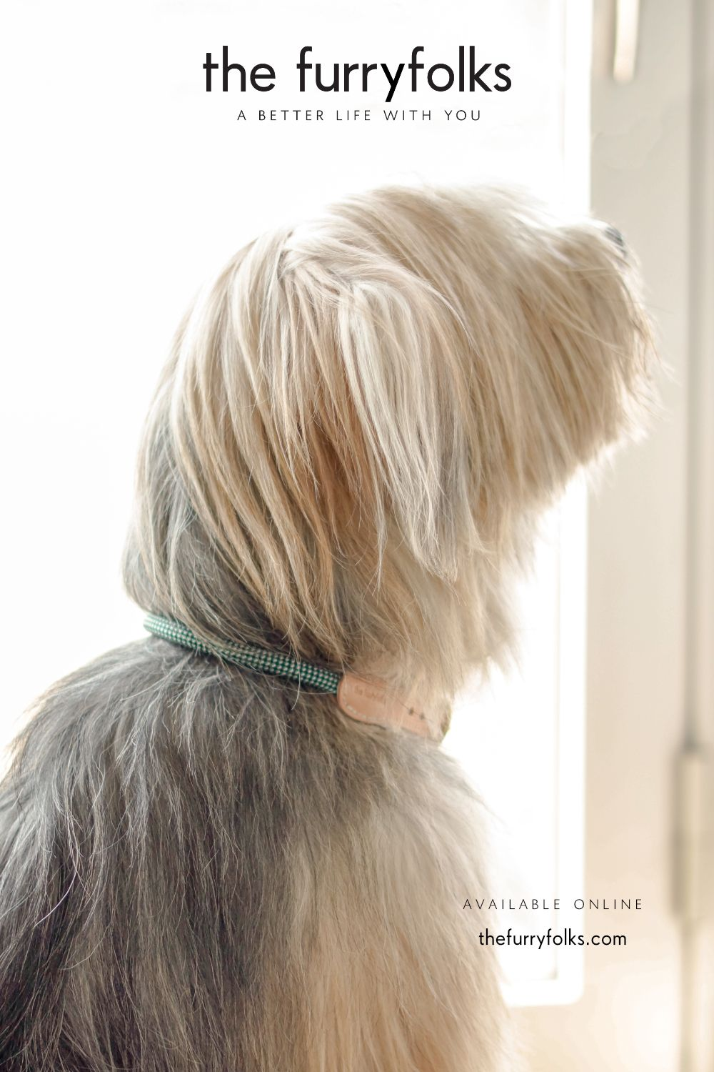 The Furryfolks Is A Lifestyle Brand For The Animal Companions We Create Timeless Pet Products Using Only High Better Life Animal Companions Lifestyle Brands