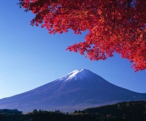 Always wanted to go to Japan! Would be a dream come true!