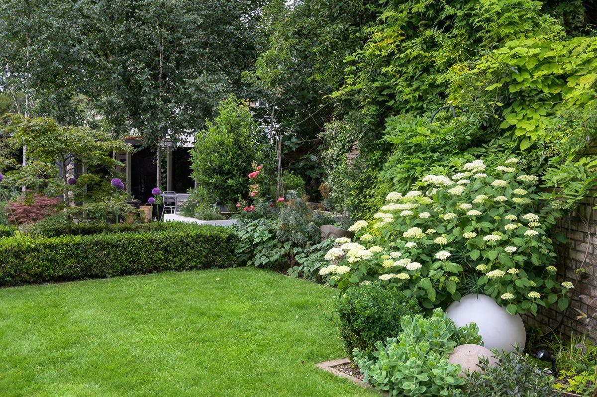 Modern Japanese Garden Design North London   Modern ...
