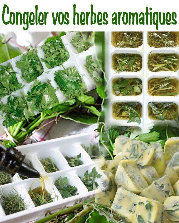 Les herbes aromatiques dans la cuisine pinterest - Herbes aromatiques en cuisine ...