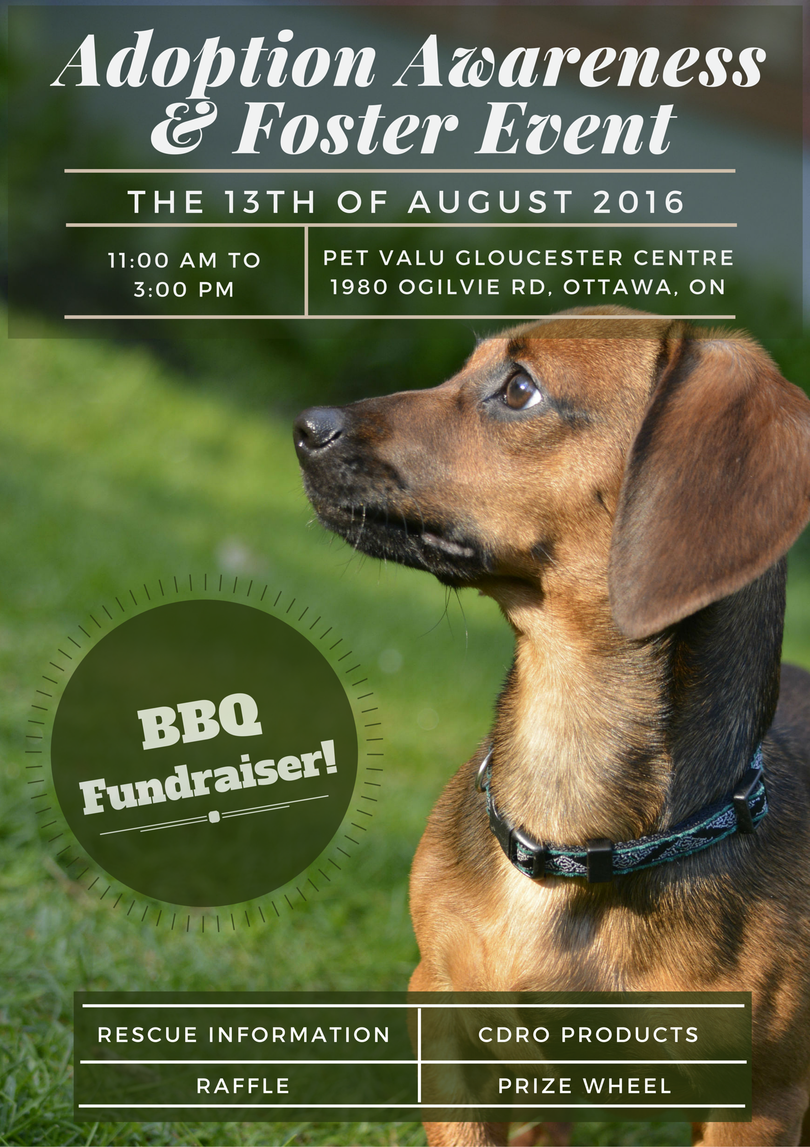 Ottawa August 13 2016 Please Join Our Volunteers And Foster