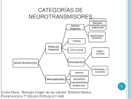 Resultado de imagen de neurotransmisores