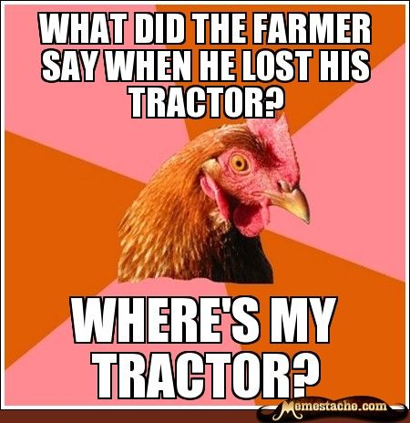 Anti-joke chicken makes me laugh more than actual jokes do.