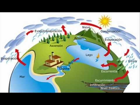 Pin De Jacques Bastin En C Naturales Ciclo Del Agua Ciclo Hidrologico Hojas De Trabajo Preescolar