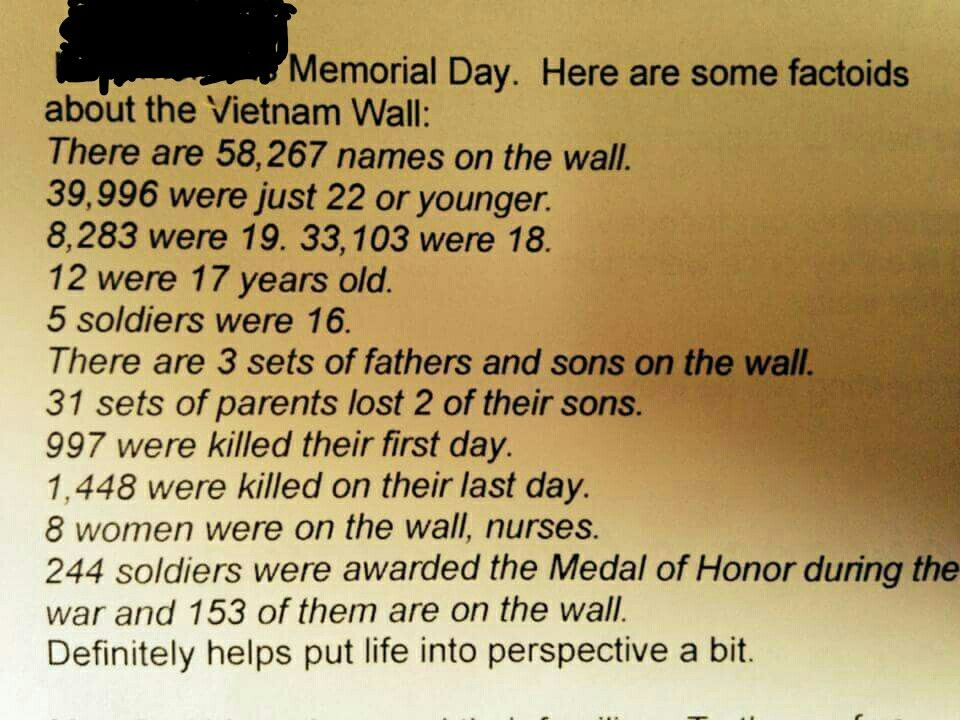 Quotes About Vietnam War Vietnam War Stats  Important History  Pinterest