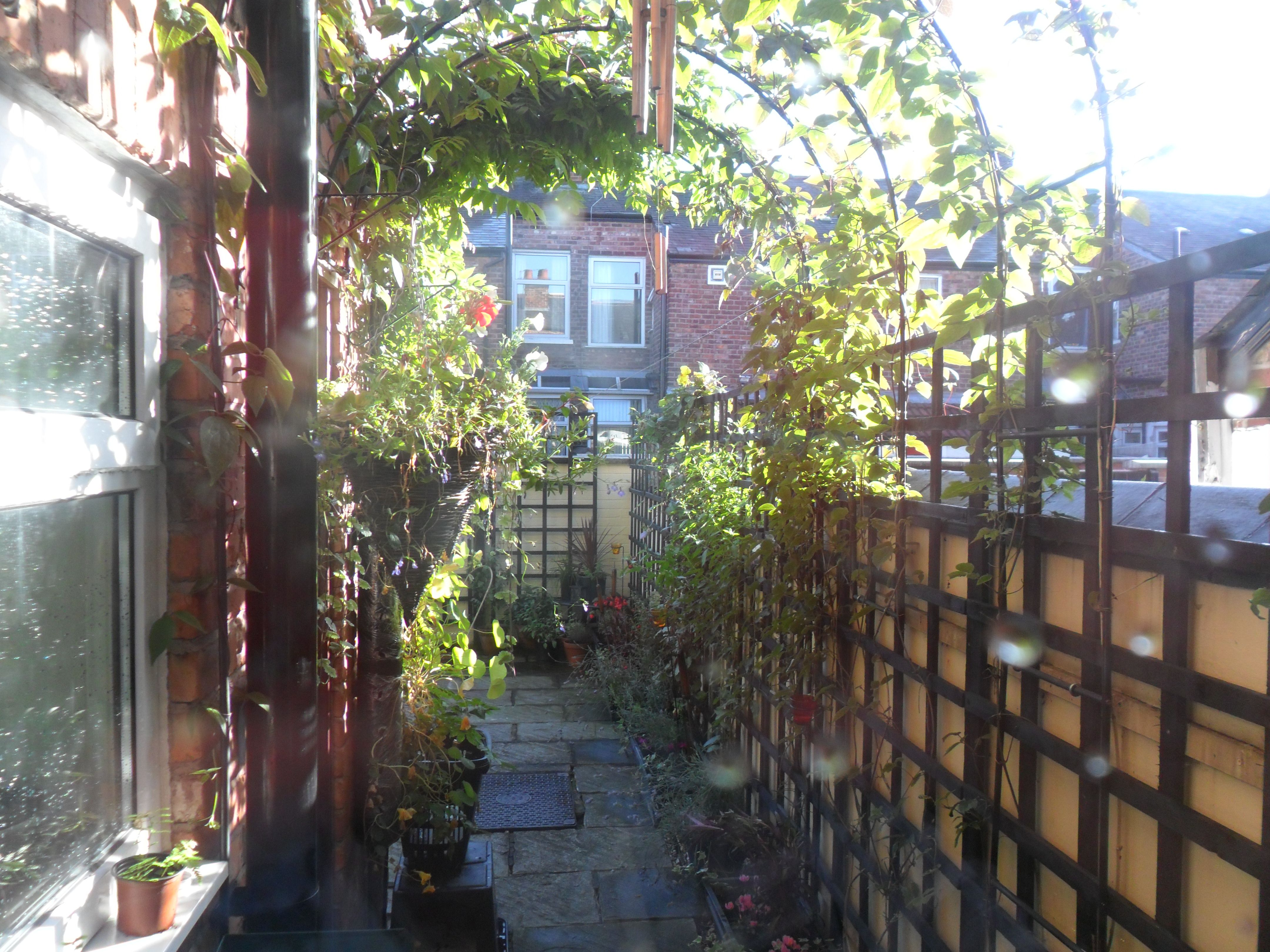 what to do with the side of a courtyard garden