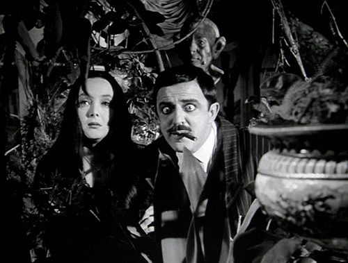 FUN FACT: Remember Morticia's man-eating plant, 'Cleopatra ...