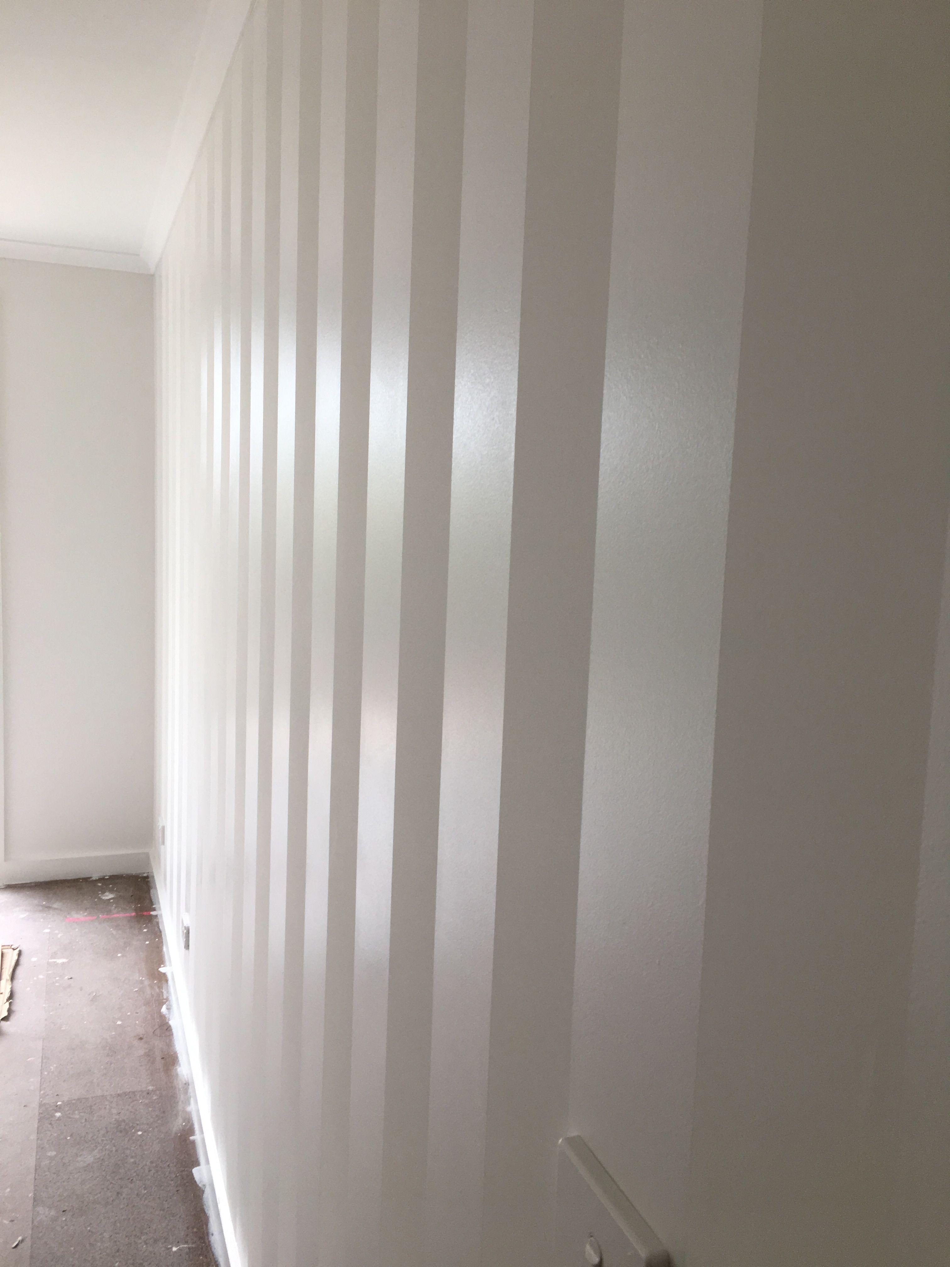 White Matt Paint And Semi Gloss Stripes