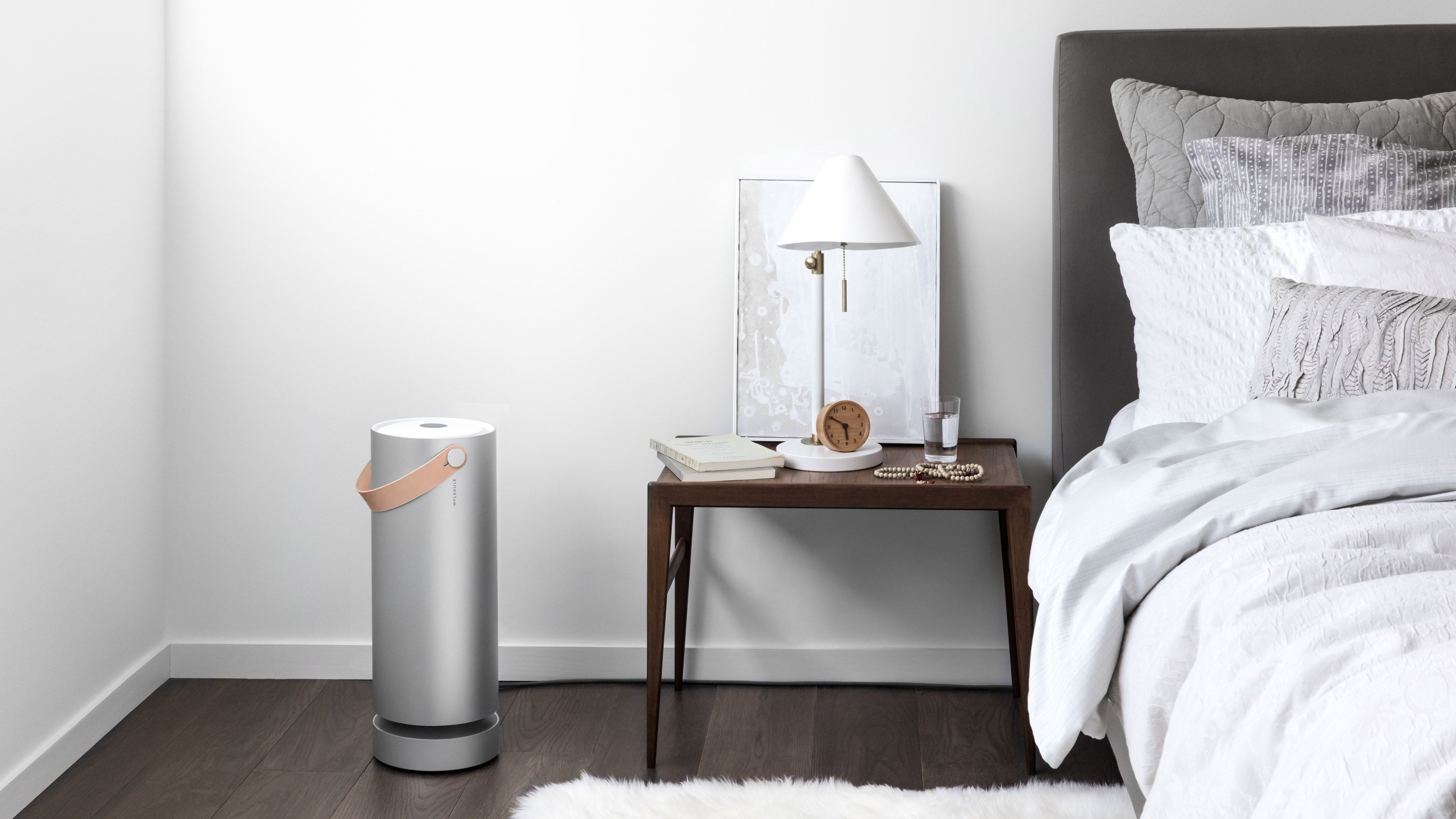 Molekule Air Purifieroczyszczacz Powietrza  20 Sposobów Na Captivating Best Bedroom Air Purifier Design Ideas