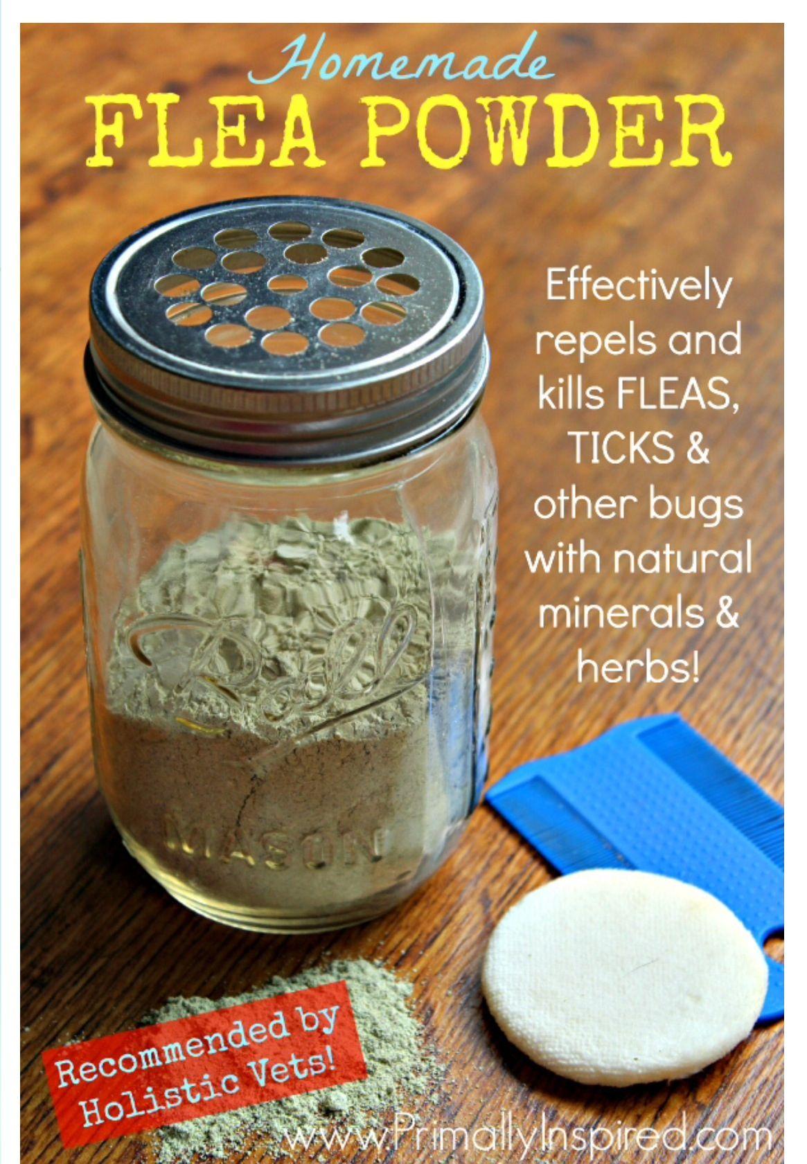 Homemade Flea Powder Recipe Ingredients 1 cup Food Grade