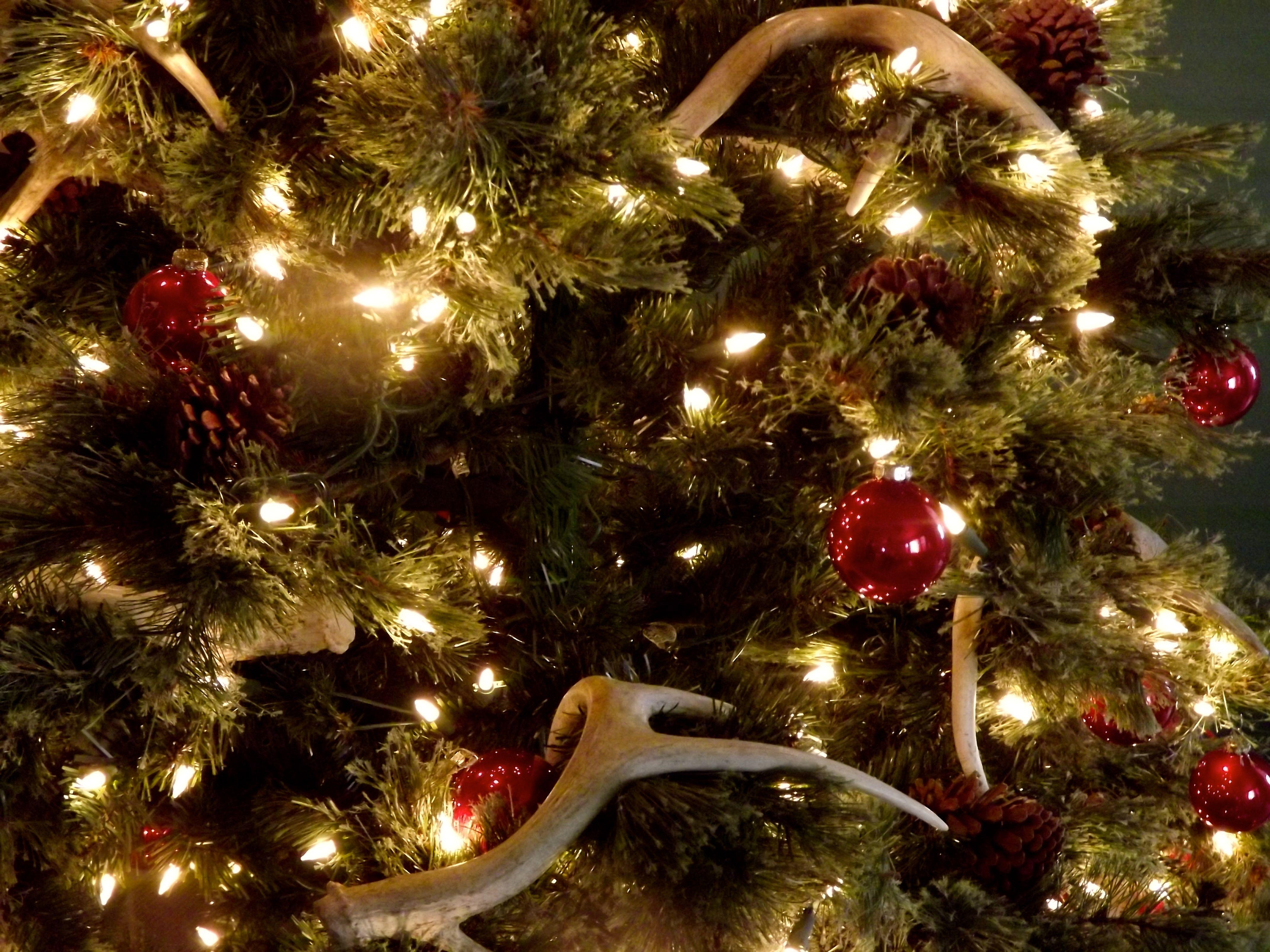 christmas tree 2012 deer antlers pinecones red bulbs - Christmas Tree Bulbs