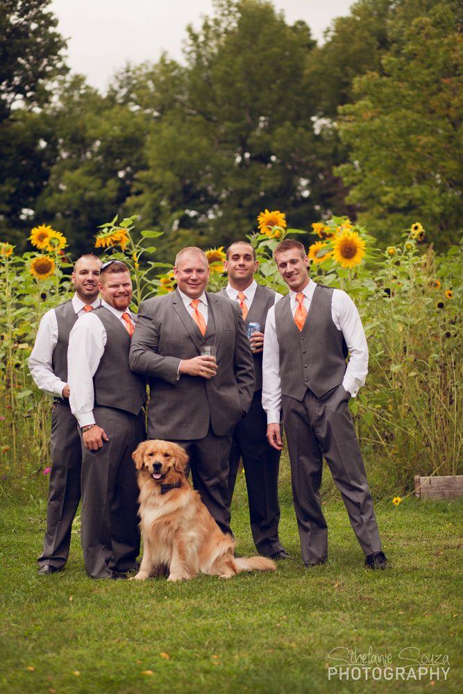 Rochester Ny Wedding Groomsmen With Dog Beautiful Lab Posing