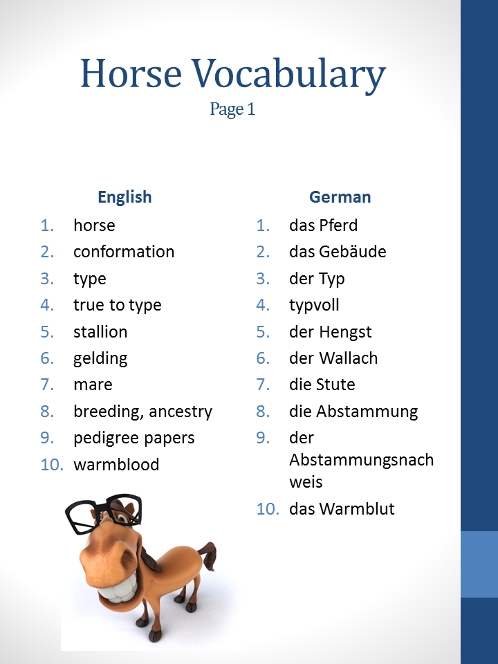 Horse related vocabulary, page 1   Germany   Pinterest   Horse and ...