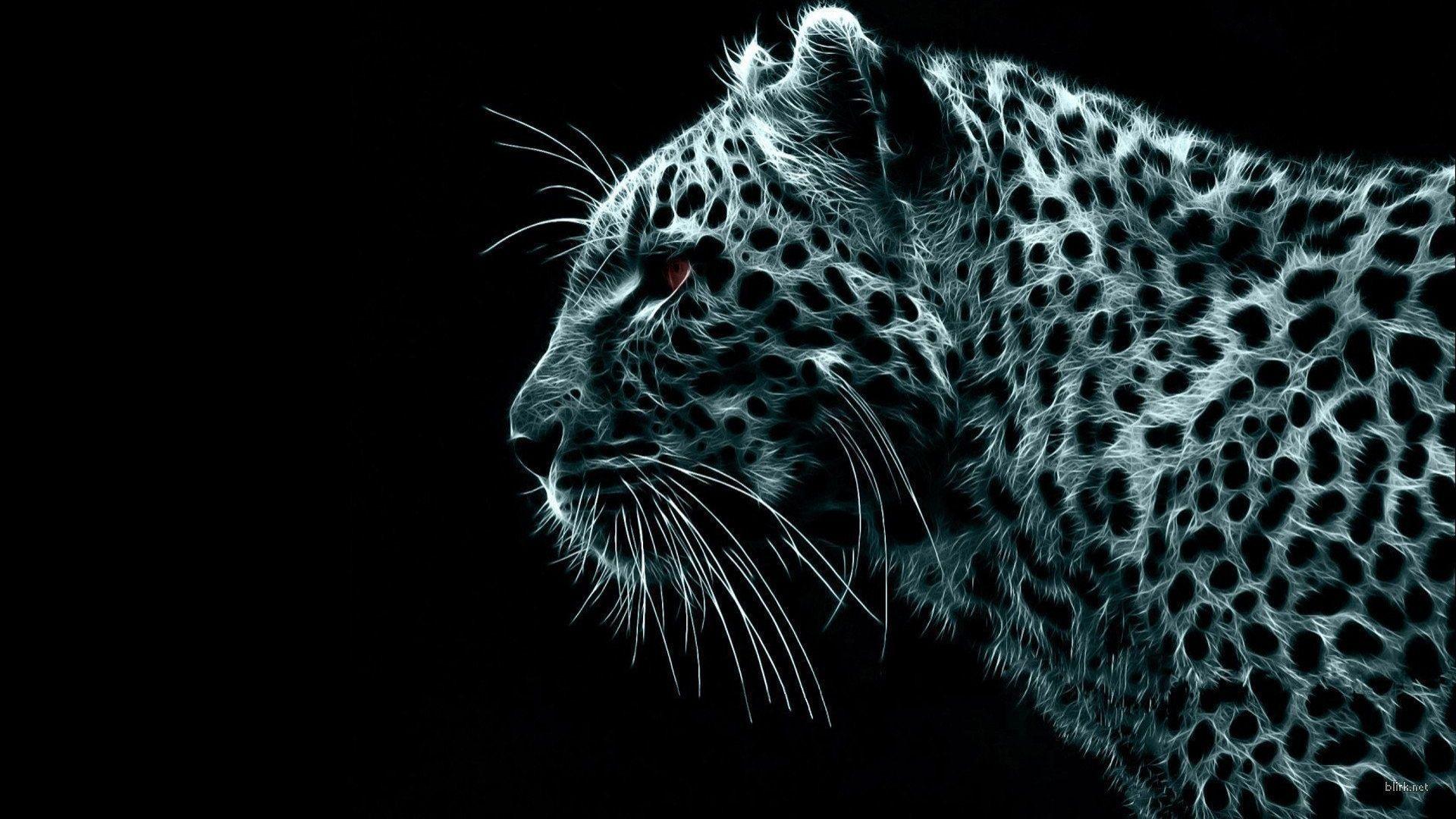 Snow_Leopard.jpg (1920×1080)