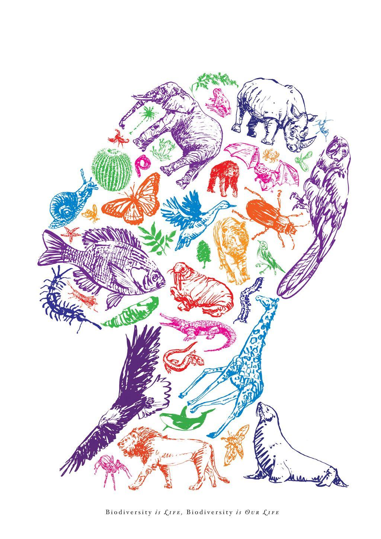 Biodiversity. (By my Graphic Design professor Antonio ...