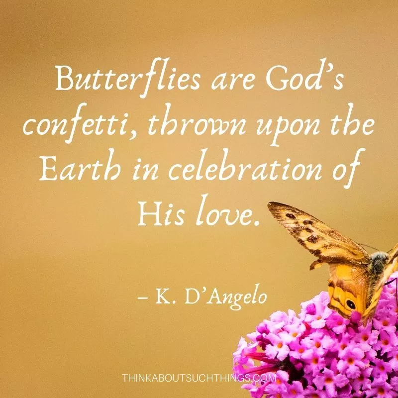 37 Inspirational Butterfly Quotes to Lift Up Your Day