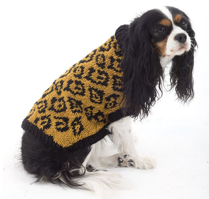 Animal Lover Dog Sweater In Lion Brand Vannas Glamour L32370 Free