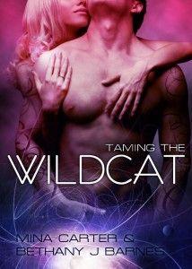 Taming the Wildcat cover art