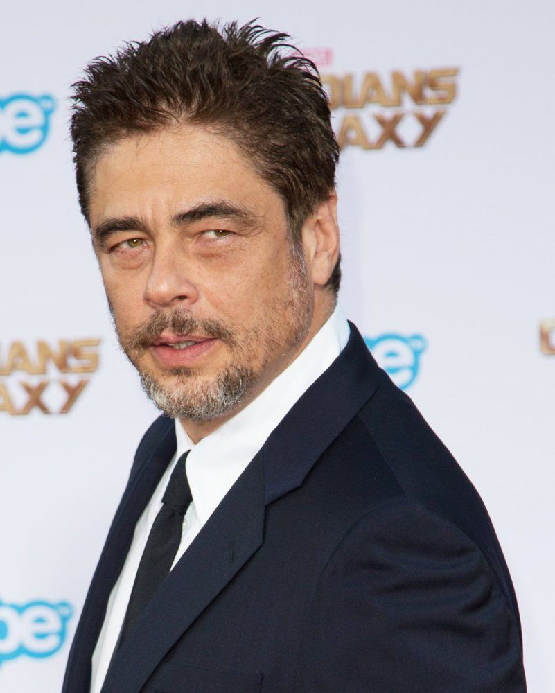 benicio del toro interview