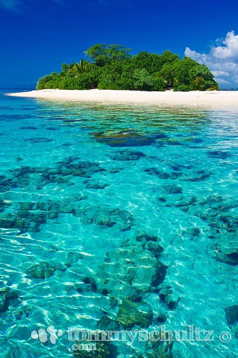 Blue water Philippine Island surrounded by coral reef | Flickr - Photo Sharing!