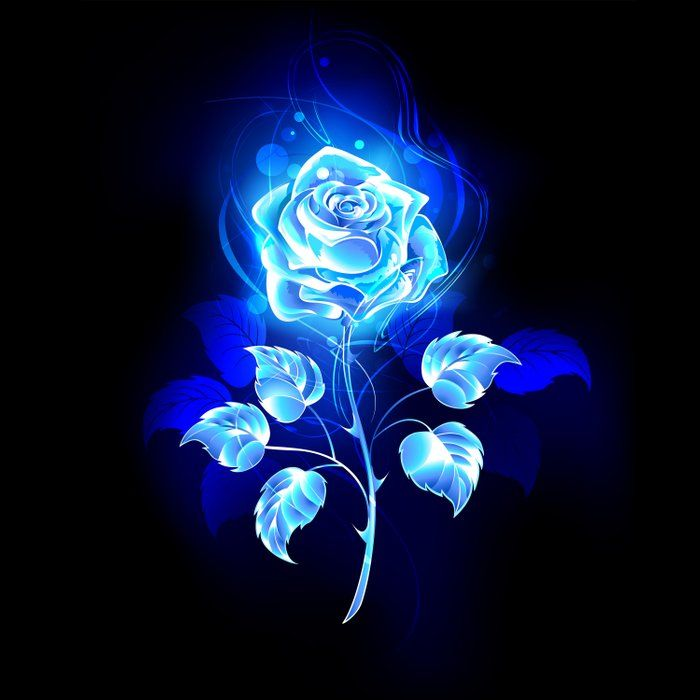 Burning Blue Rose Comforters by blackmoon9