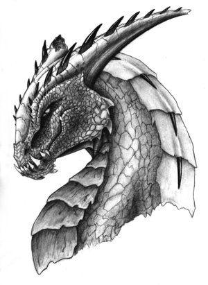 dragon_head_by_flippy64.jpg (300×411)