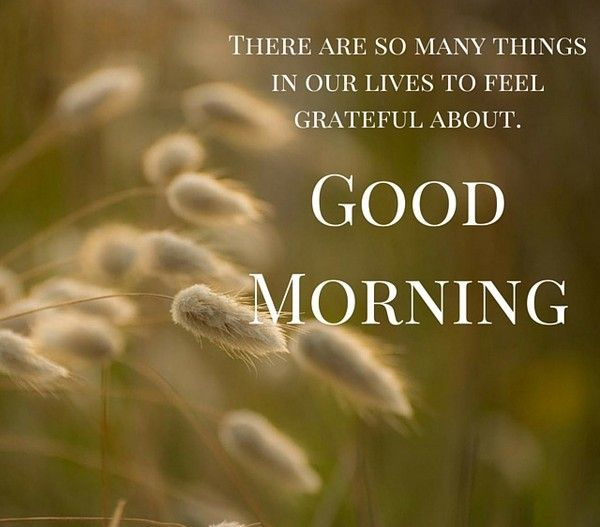 Good Morning Quotes Unique : Unique good morning quotes and wishes night prayer