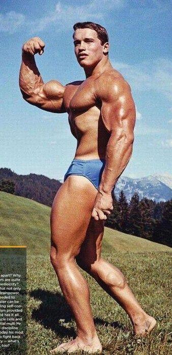 Bodybuilding táplálkozás - minta testépítő diéta