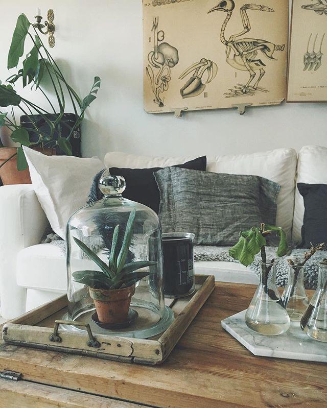 #vardagsrumsinspo#nordiskinspirasjon#scandinavianinterior#industrialliving#loppisfynd#vintagehome#vackertskrot#patina#plantlife#livingroom#industrialinterior#inredningsdetaljer#nordichome#scandinavianhome