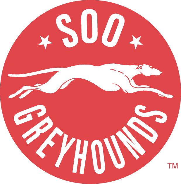 Greyhounds Had A Successful Weekend In Chicago At The Bauer World Invitational Hockey Tournament Description From Saultspor With Images Hockey Logos Greyhound Sports Logo