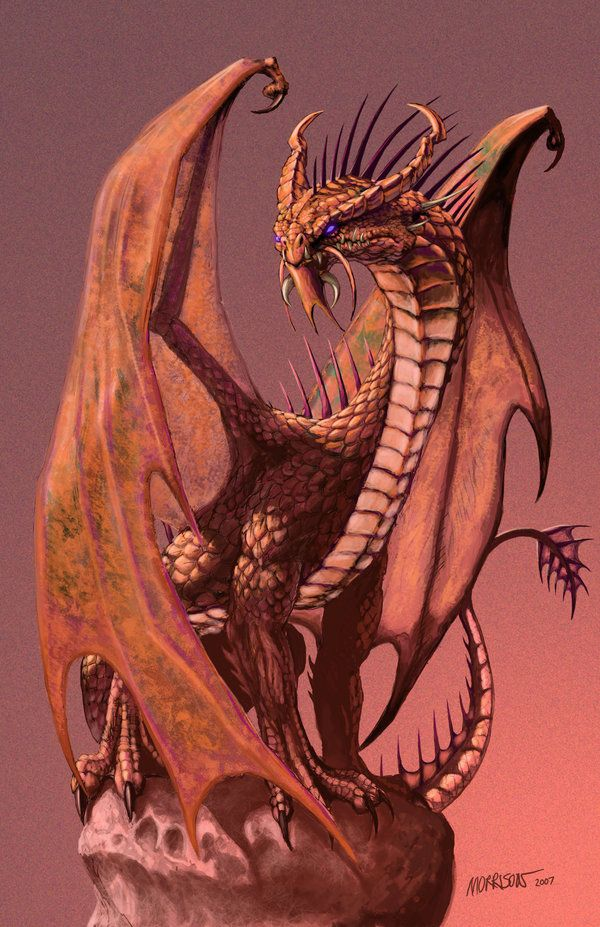 Copper Dragon ~ by SMorrisonArt -- [REPINNED by All Creatures Gift Shop]