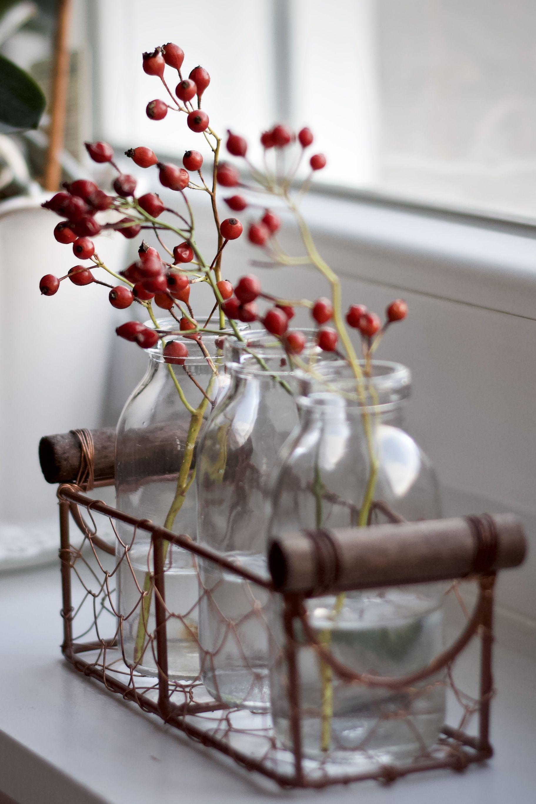 Rosen mit Hagebutten - Landkindleben #weihnachtsdekoglas