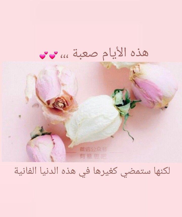 اللهم اشف كل مريض وفرح قلب كل مهموم Wind In My Hair Rose Flower Quotes