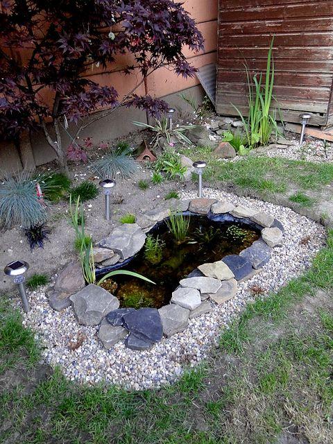 Fish Pond Gardens Rock Garden Design, Small Garden Pond Design