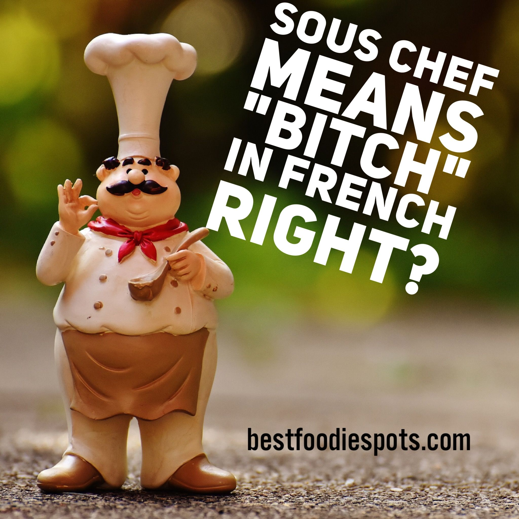 Pin By Bestfoodiespots On Best Foodie Memes Chef Meaning Sous Chef Chef