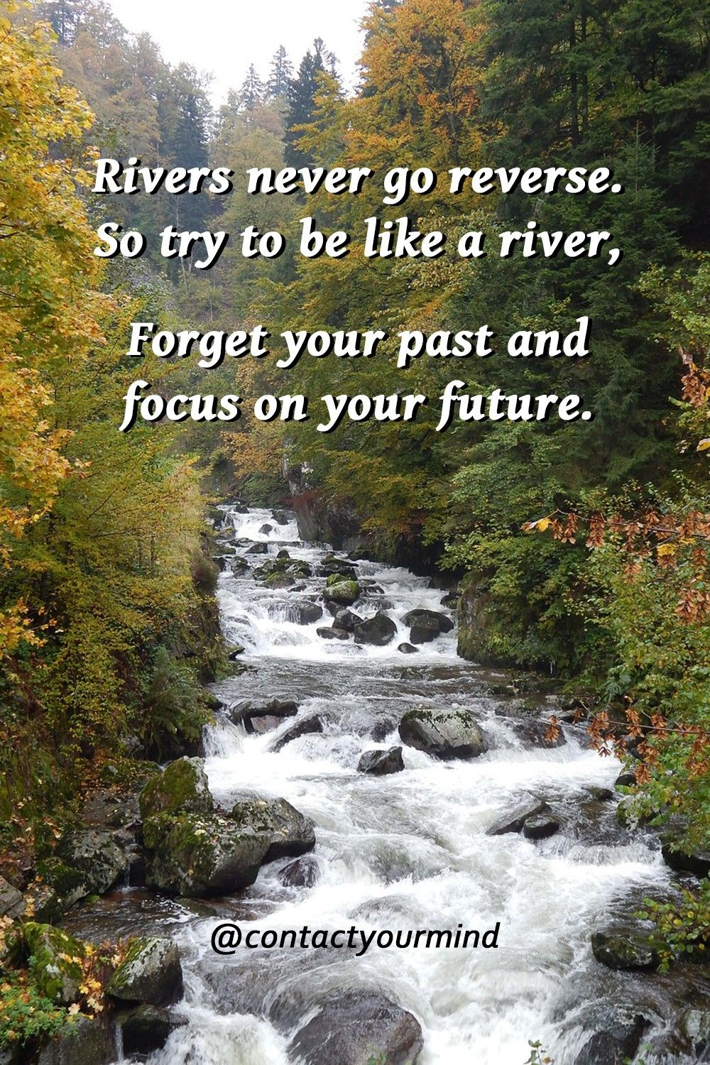 """Just because the past didn't turn out like you wanted it to,  doesn't mean your future can't be better than you've ever imagined.  Your past has strengthened you, so now its time to focus on your future.""   #contactyourmind  #focus #nevergiveup #keepgoing #believe #believeinyourself #quotes #lifequotes"