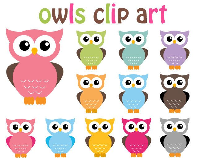 buy 2 get 2 free owl clip art clipart 12 digital elements rh pinterest co uk free owl clipart cute free owl clip art printables