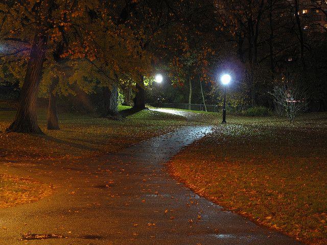 Central Park Path Autumn Night Paths Night Photo